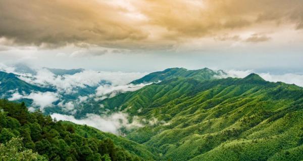 井冈山免费景点有哪些_井冈山旅游