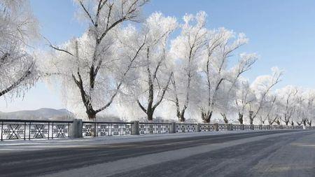 最好看的雾凇,为啥都在吉林省吉林市?