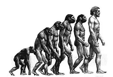「人类的起源是亚洲吗」人类的祖先是起源于非洲还是亚洲