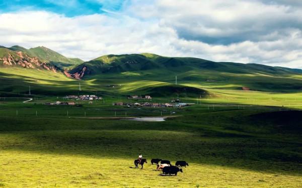 美过稻城,比西藏小众!没来过甘南别说你跑遍藏区,这种说法可靠吗?