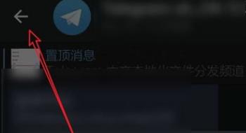 telegram 设置成中文界面插图5