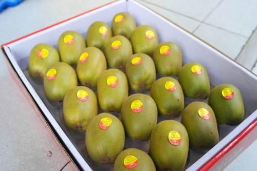 陕西和蒲江的猕猴桃哪个好吃