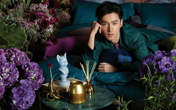 为什么刘诗诗和胡歌几乎从来不参加综艺节目?