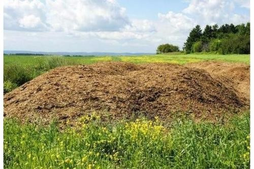 兔粪、牛粪、鸡粪这三种有机肥哪种更适合大棚种植?