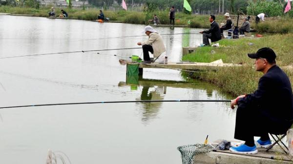 钓鲤鱼打窝配方及技巧是什么?