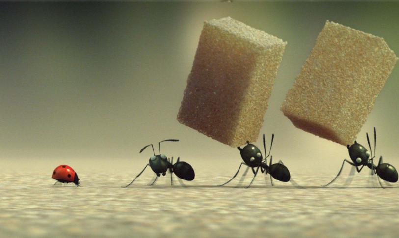 描写蚂蚁样子(用上好句子)4、50个字即可