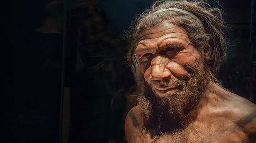 阴毛、腋毛、头发有什么用?人类褪去了体毛,为什么保留了它们?