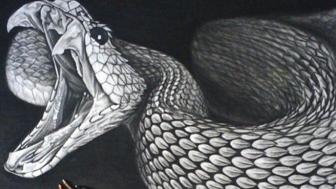 遭遇大蛇該怎么辦?一把鋒利匕首就能自救?有個方法:一刀干死!
