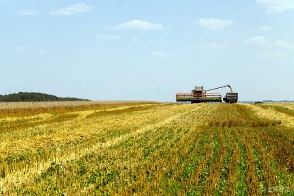 投资农业有没有发展前景???????????