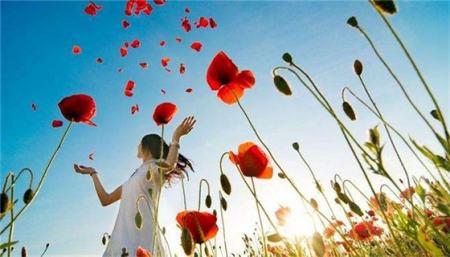 红玫瑰与白玫瑰代表什么意义?