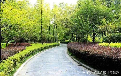 公路两侧陡坡或缓坡地段怎么栽培树木绿化施工?