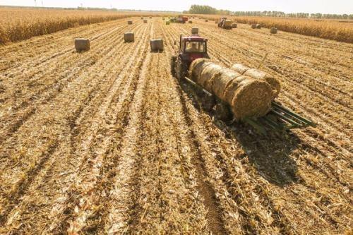 作为粮食大国的美国,是如何处理秸秆的?