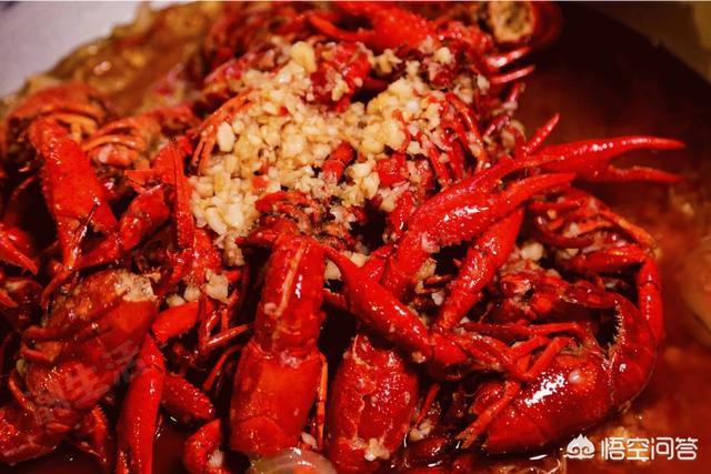 小龙虾与龙虾的区别是什么?哪个好吃?