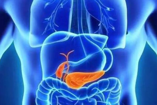 胆囊结石微创手术需要多少钱?