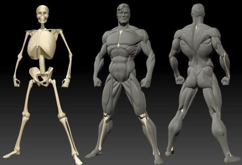 """古人常说的""""死穴""""真的存在不,在身体的什么位置?"""