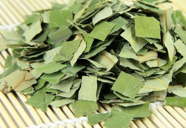 哪种茶叶减肥效果好 有哪几种茶可以有效减肥