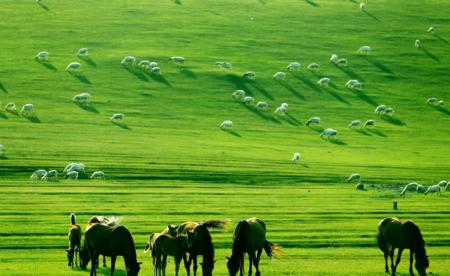 锡林郭勒大草原有哪些旅游景点(锡林郭勒大草原好玩吗)