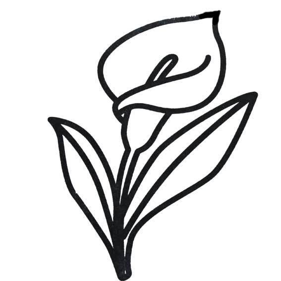 花卉简笔画怎么画