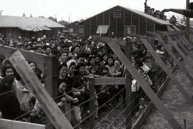二战时期的美国陆军第442步兵团为什么都是日本人?