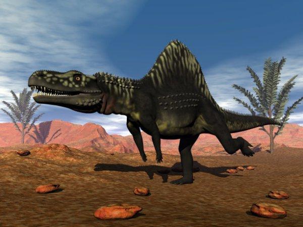 「人类和恐龙共存过吗」如果有史前文明 是先有史前人类还是先有恐龙?还是史前人类与恐龙共存过。