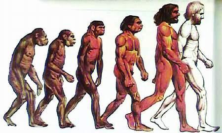 「200万年前的人类工具图」人类的进化过程(图)