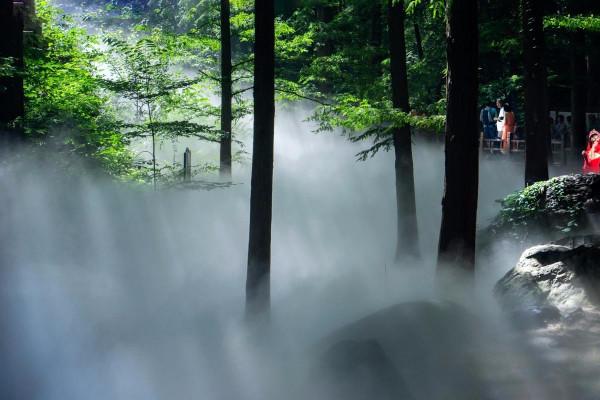 形容雾气仙境的诗词