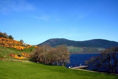 「尼斯湖湖怪真相图片」尼斯湖水怪的真相到底是什么?