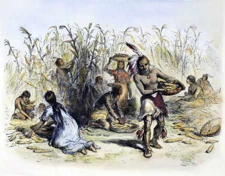 美国西部岩壁发现大量商朝的甲骨文字,印第安人是中国后裔吗?