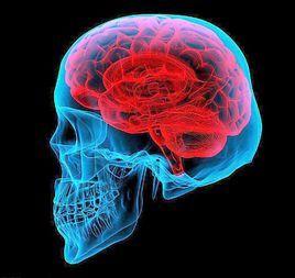 一般人大脑开发了多少?