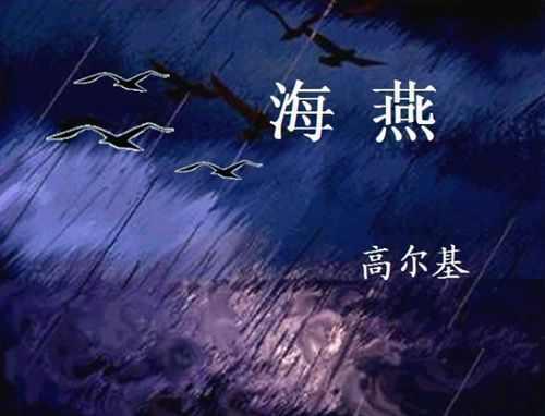 海燕 的简笔画