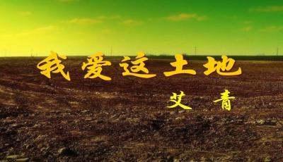 艾青《我爱这片土地》全文(《我爱这土地》艾青)