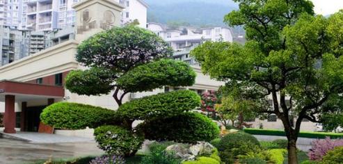 早春园林绿化养护这七件事你做了吗?