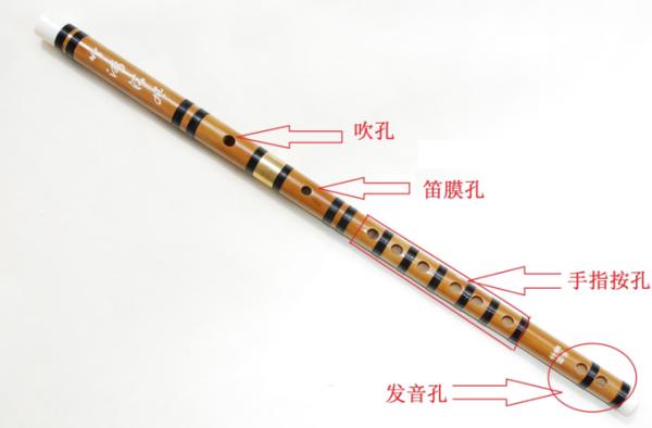 如何从一个笛子新手到笛子大神?