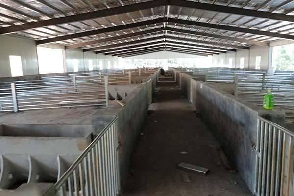农村养猪打扫猪舍用什么方法好?