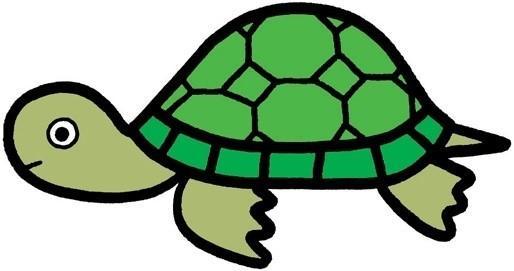 乌龟怎么画,乌龟简笔画步骤,乌龟儿童画图片大全