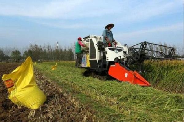 农民稻子倒了,收割机趁机涨价,合理吗?