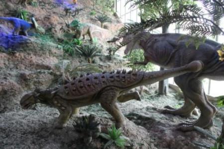 有没有可能人类是外星来的, 6500万年前杀了恐龙带的高科技也用完了?