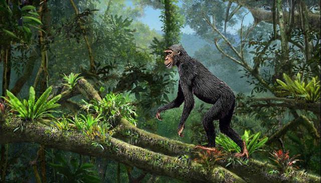 渔民发现奇怪物体,被认为是2.5亿年前芯片,史前文明或存在?