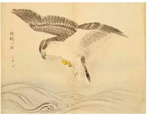 雁的古代诗词意义,雁在古诗词中的象征意义