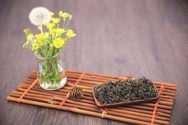 蒲公英可以直接晒干泡茶吗?