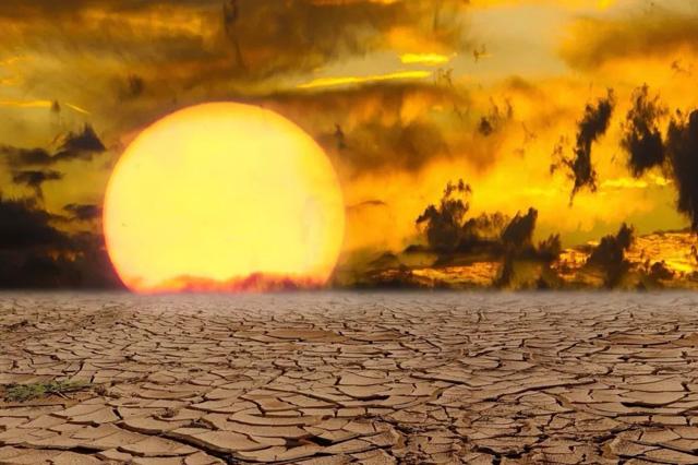 沙漠发洪水?气候异常意味着什么?人类能做些什么?