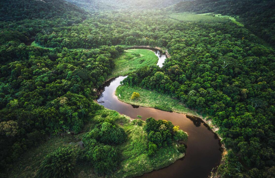 地球禁区:亚马逊丛林有多可怕,为什么?