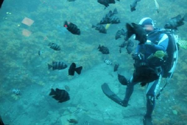 济州岛海底意外发现文物,还有哪些在海底发现的震惊世界的文物?