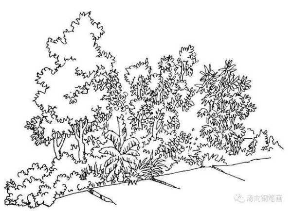 开满鲜花的小路简单的简笔画