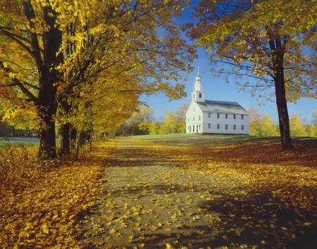 描写秋天的古诗