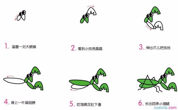 螳螂卡通简笔画怎么画图解