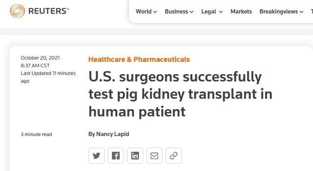 世界首例猪肾脏移植人体手术成功 未立即出现排异反应