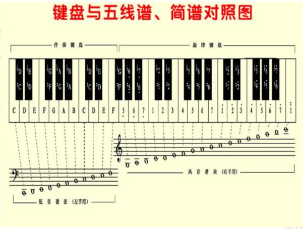 五线谱与简谱的对照图片!!(大提琴五线谱与简谱的对照)
