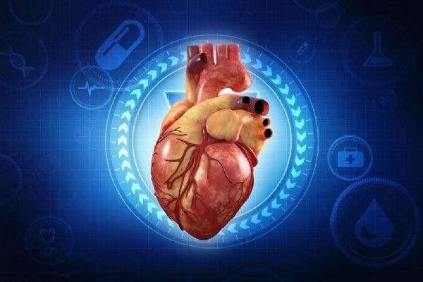 国内首款人工心脏获批上市,这样的人工心脏主要有哪些功能?