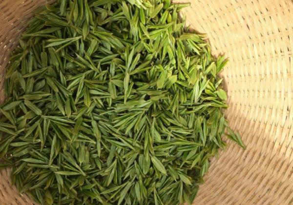 十大茶叶,中国十大名茶